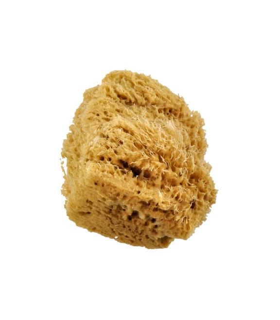 Wool Sponge Large